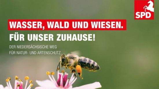 Als Werbung für den Natur- und Artenschutz zeigt das Bild eine Biene auf einer Blüte