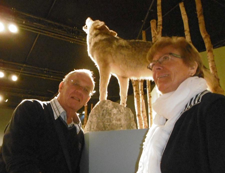 Besuch im Wolfscenter